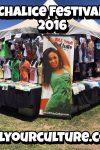 Kill Your Culture Chalice Festival 2016